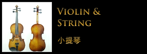 violin-and-string